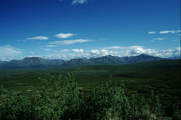 Alaska_2_Der_Fotoraum_Jürgen_Sedlmayr_309