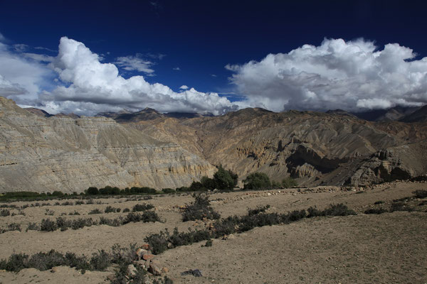 Nepal_UpperMustang_Expedition_Adventure_Jürgen_Sedlmayr_250