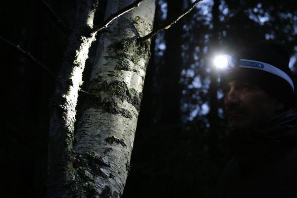 Norwegen_2017_Der_Fotoraum_Jürgen_Sedlmayr_289