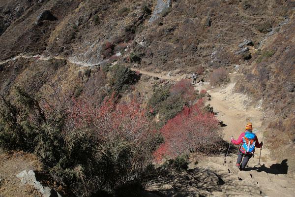 Nepal_Everest3_Expedition_Adventure_Reisefotograf_206