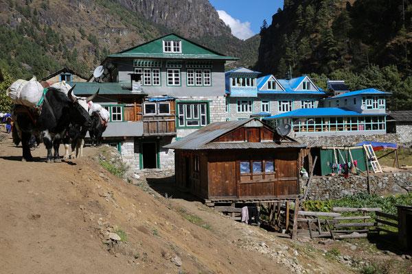 Nepal_Everest1_Abenteurer_Jürgen_Sedlmayr_69