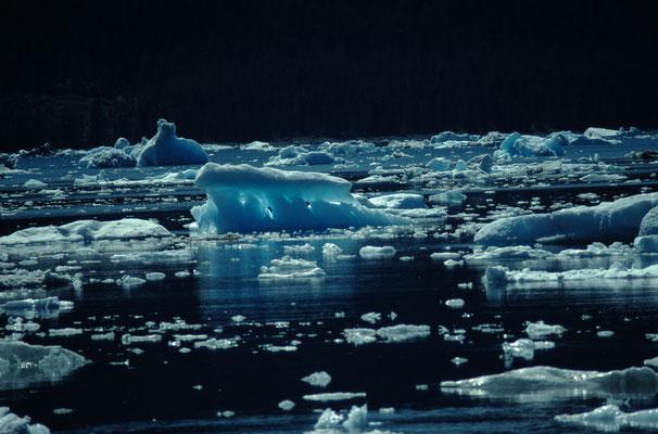 Alaska_2_Jürgen_Sedlmayr_235