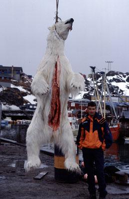 Grönland_Reisefotograf_Jürgen_Sedlmayr_78
