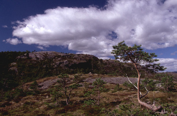 Norwegen_2005_Jürgen_Sedlmayr_221