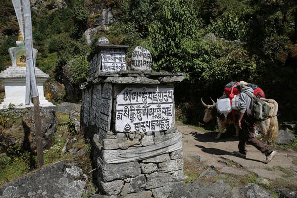 Nepal_Everest1_Abenteurer_Jürgen_Sedlmayr_94