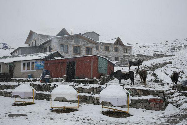 Nepal_Everest4_Der_Fotoraum_Jürgen_Sedlmayr_212