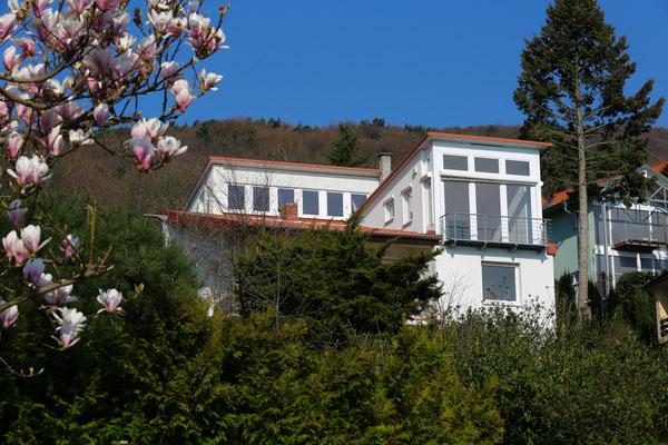 Immobilienfotograf-Juergen-Sedlmayr-Hang