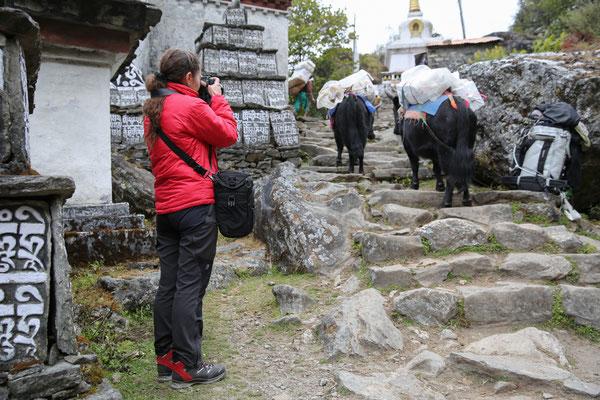 Nepal_Everest3_Reisefotograf_Jürgen_Sedlmayr_48
