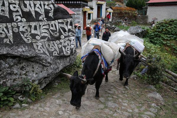 Nepal_Everest3_Reisefotograf_Jürgen_Sedlmayr_46