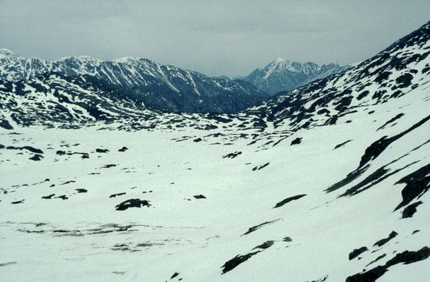 Alaska_2_Jürgen_Sedlmayr_212