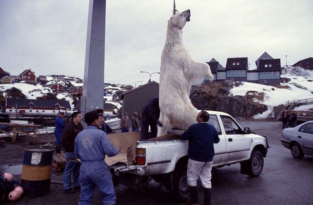 Grönland_Reisefotograf_Jürgen_Sedlmayr_73