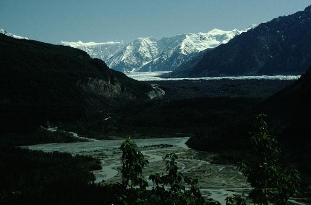 Alaska_2_Jürgen_Sedlmayr_224
