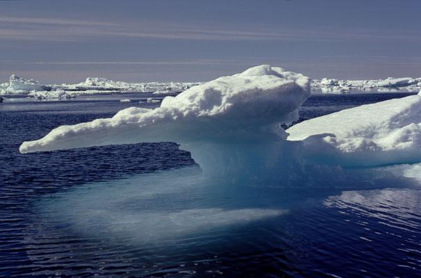 Grönland_Reisefotograf_Jürgen_Sedlmayr_51