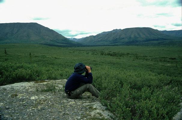 Alaska_2_Der_Fotoraum_Jürgen_Sedlmayr_326