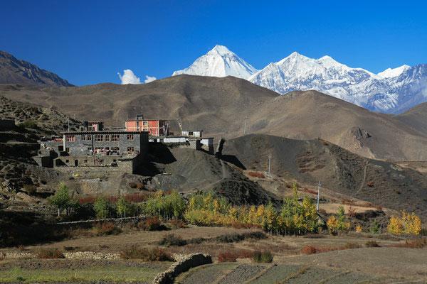 Nepal_Mustang_Der_Fotoraum_Abenteurer_Jürgen_Sedlmayr_320