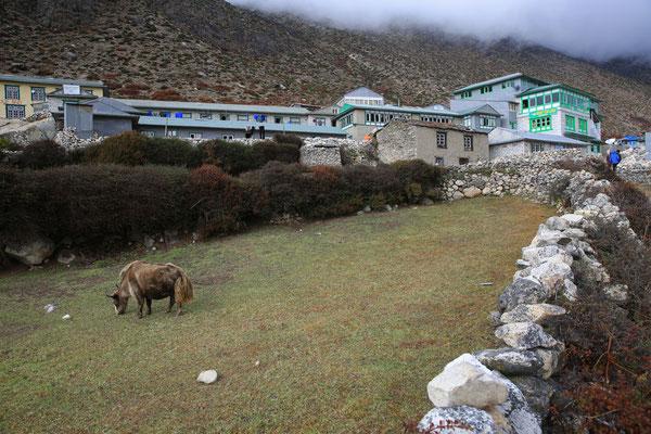 Fotogalerie_Nepal_Everest1_Jürgen_Sedlmayr_258