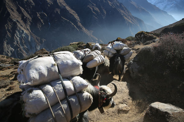 Fotogalerie_Nepal_Everest2_Reisefotograf_Jürgen_Sedlmayr_155