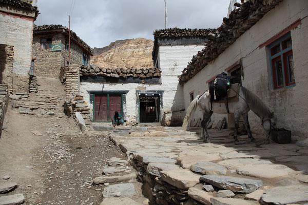 Nepal_UpperMustang_Abenteurer_Jürgen_Sedlmayr_141