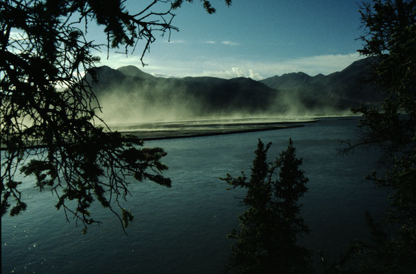 Alaska_2_Jürgen_Sedlmayr_221