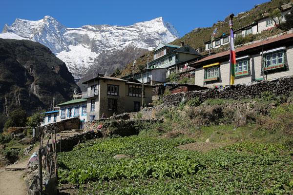 Nepal_Everest1_Der_Fotoraum_Jürgen_Sedlmayr_190