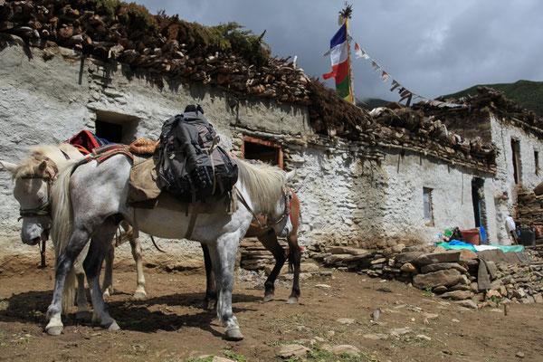 Nepal_UpperMustang_Abenteurer_Jürgen_Sedlmayr_185