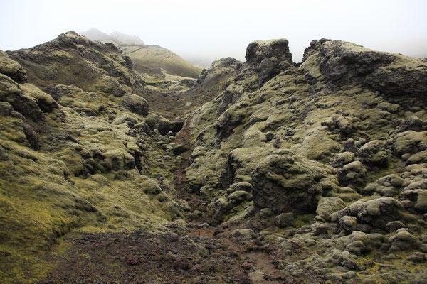 ISLAND_3.1_Abenteurer_Jürgen_Sedlmayr_172