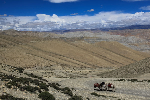 Nepal_UpperMustang_Expedition_Adventure_Jürgen_Sedlmayr_296