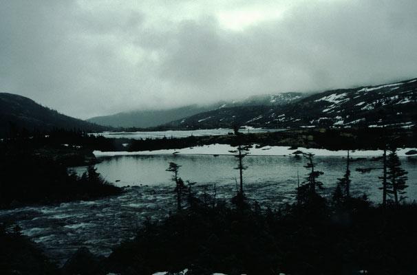 Alaska_2_Jürgen_Sedlmayr_218