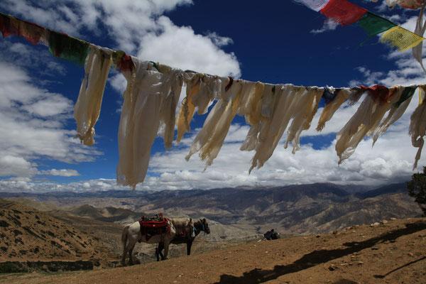 Nepal_UpperMustang_Abenteurer_Jürgen_Sedlmayr_194
