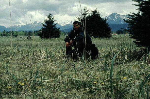 Alaska_2_Reisefotograf_Jürgen_Sedlmayr_169
