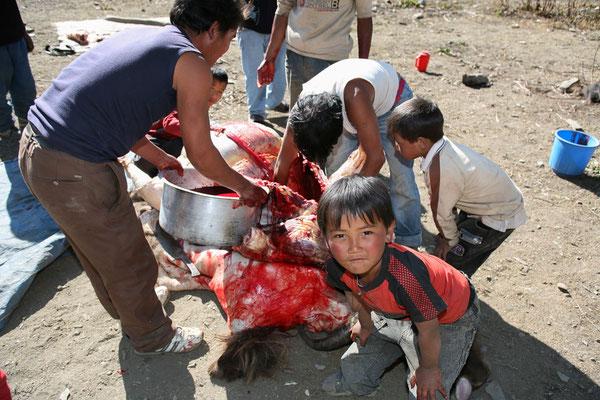 Nepal_Mustang_Der_Fotoraum_Abenteurer_Jürgen_Sedlmayr_374