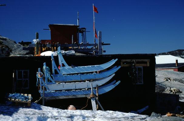 Grönland_Jürgen_Sedlmayr_222