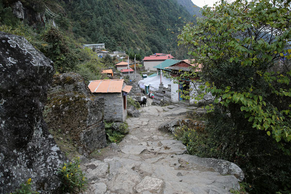 Nepal_Everest1_Abenteurer_Jürgen_Sedlmayr_83