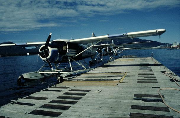 Alaska_2_Reisefotograf_Abenteurer_Jürgen_Sedlmayr_149