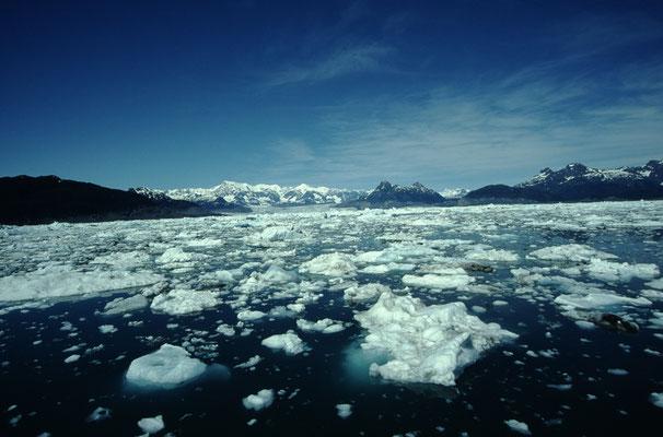 Alaska_2_Jürgen_Sedlmayr_238
