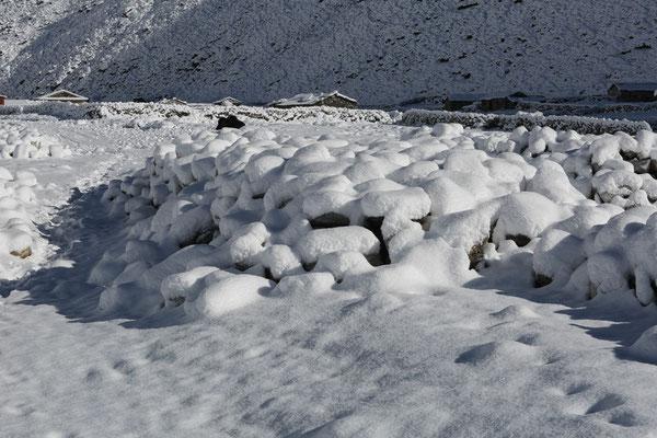 Nepal_Everest4_Der_Fotoraum_Jürgen_Sedlmayr_278