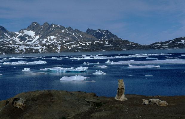 Grönland_Abenteurer_Jürgen_Sedlmayr_143