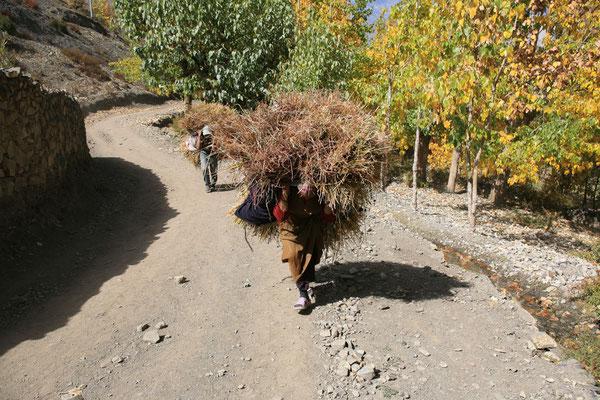 Nepal_Mustang_Expedition_Adventure_Reisefotograf_Jürgen_Sedlmayr_168