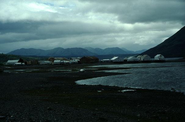 Alaska_2_Jürgen_Sedlmayr_245