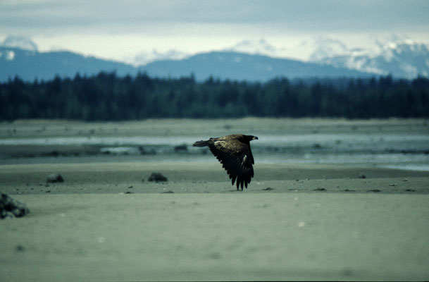 Alaska_2_Reisefotograf_Jürgen_Sedlmayr_170
