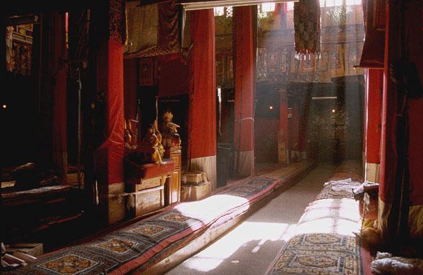 Tibet_Abenteurer_Jürgen_Sedlmayr_192