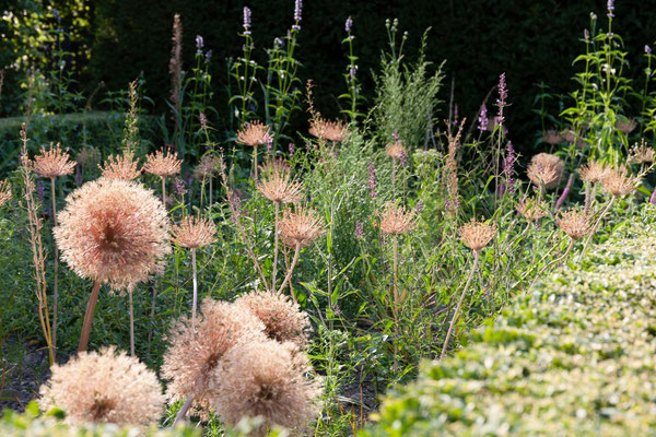 détail jardin , Beaulieu-en-Argonne, Meuse