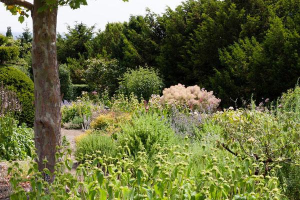 vue jardin à fleurs Beaulieu-en-Argonne, Domaine Le Chatel