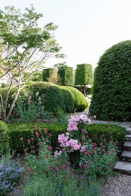 jardin avec buis, Domaine Le Chatel,gîtes,  Beaulieu-en-Argonne