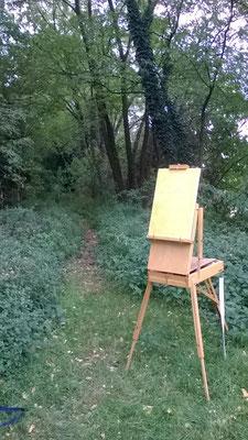 sentiero Cernusco ottobre 2016