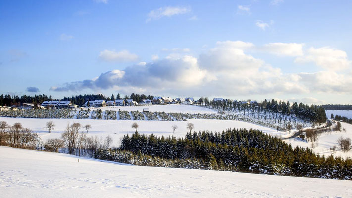 Winterlandschaft in Winterberg
