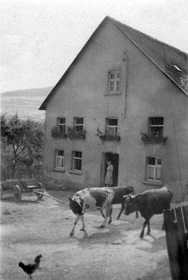 Schulten 1951 - Foto von Birgit Berkenkopf