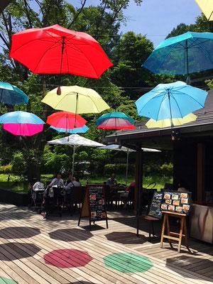 色とりどりの傘が踊ってる⛱