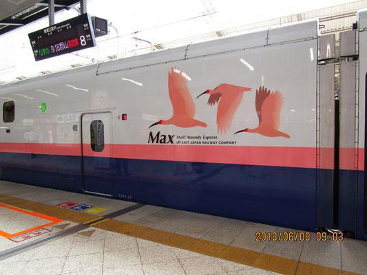上越新幹線は美しい✨ 今度ぜひ乗ってみたいものです💖