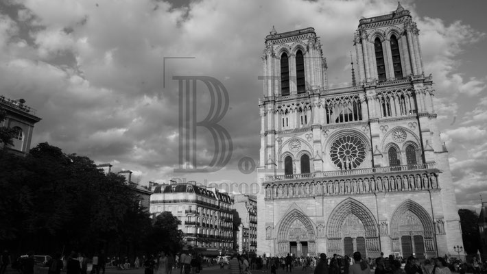 Notre Dame Noir et Blanc